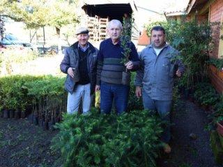 Lagoa dos Três Cantos recebeu mudas de árvores do Projeto Coprel Ecologia