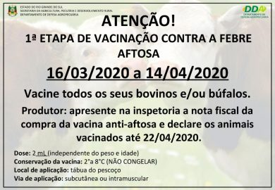 1ª ETAPA DA VACINAÇÃO CONTRA A FEBRE AFTOSA