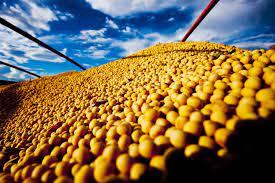 Lagoa dos Três Cantos produziu mais de 44 mil toneladas de grãos na safra de verão 2020/2021