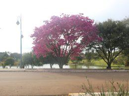As cores da Lagoa dos Três Cantos