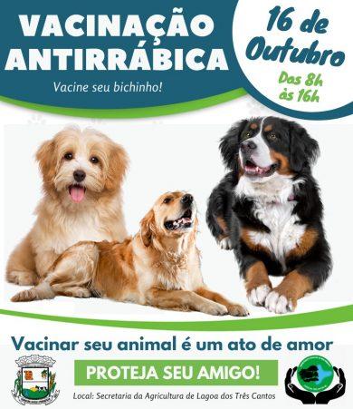 Secretaria da Agricultura de Lagoa dos Três Cantos anuncia a 2ª etapa da campanha de vacina antirrábica